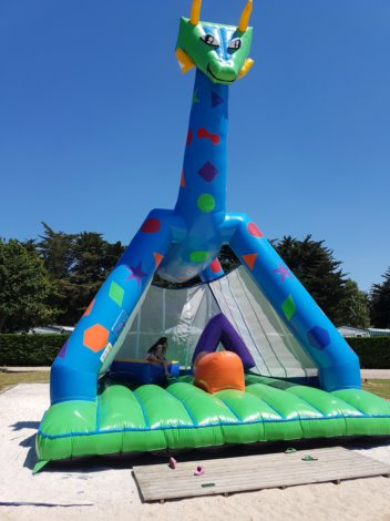 Flower Camping Les Brillas 3*
