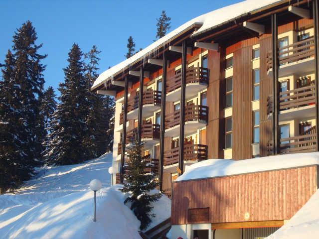 Ski & Soleil - Appartements Bouquetins A