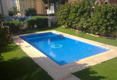 Vacances : Apartment in Benidorm 101302