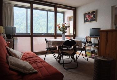 location appartement ski artouste