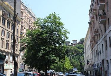 Vacances : Roma Piazza del Popolo - Flaminio