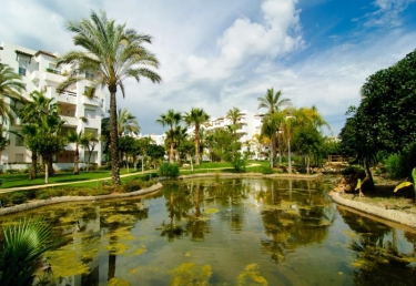 Vacances : Apartment in Estepona Málaga 102403