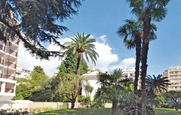 Vacances : Cannes FCA153