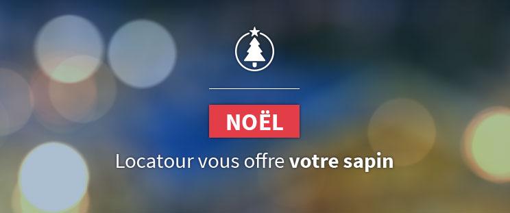 Pour Noël Locatour vous offre votre sapin