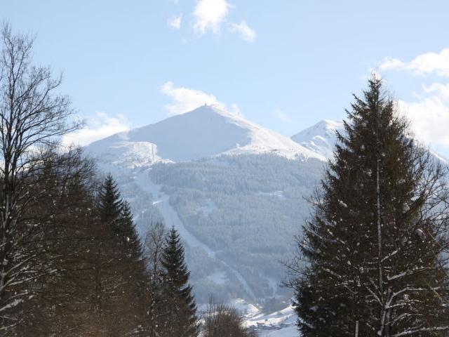 Apartment Sattlerweg AT5630.130.1