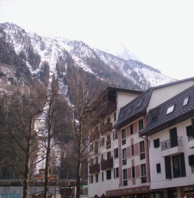 Apartments Chamonix Sud Bat.E